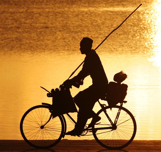 Zanzibar Cyclist